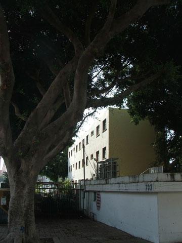 בית ספר דרויאנוב. הורסים כדי לבנות מחדש (צילום: עילם טייכר )
