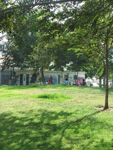 השכונה מצטופפת, הדשא ייעלם (צילום: עילם טייכר )