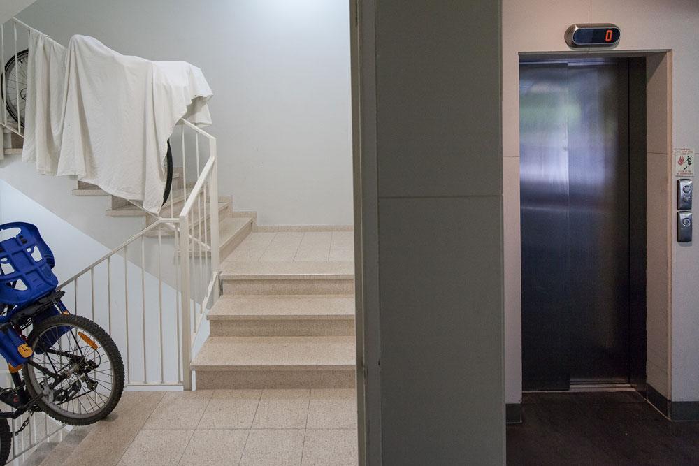 חדר מדרגות עכשווי טיפוסי: יש מעלית, הכל לפי התקנים - ואין כל ייחוד או יופי  (צילום: טל ניסים)