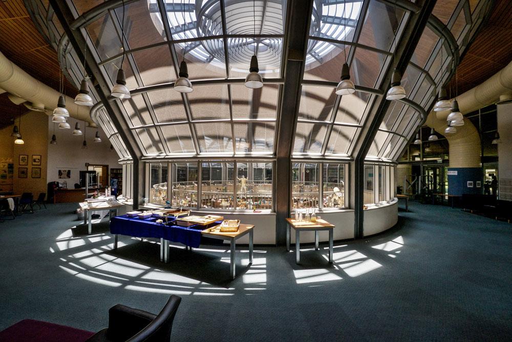 הפטיו הענק במרכזה של הספרייה, שמציעה כ-17 אלף ספרים באנגלית על פני כ-2,600 מ''ר (צילום: איתי סיקולסקי)