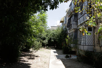 אהבו את השקט השכונתי ואת המרווח בין הבניינים (צילום: איתי בנית)