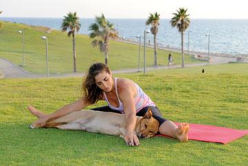 הכלבים נהנים מהפעילות המשותפת עם בעליהם, וגם מהעיסוי והמתיחות (צילום: דפנה קפלן)