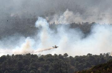 """השריפה בכרמל, דצמבר 2010. """"הרמה עלתה בעקבות האסון"""" (צילום: gettyimages)"""