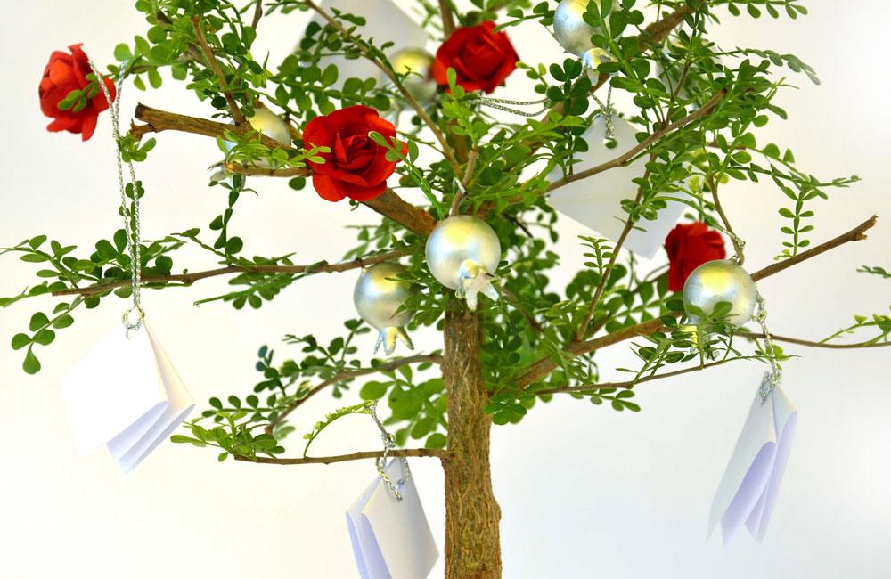 עץ הרימונים (צילום: שרון צח)
