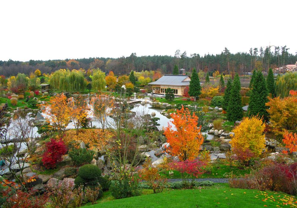 עוד מתוך אותו גן יפני, אחד מני רבים שתיכנן נאקאנה ברחבי העולם. חמישה אלמנטים בלבד: צמחייה, מים, סלעים, חול וטחב (באדיבות הצוות שלנאקנה שירו)