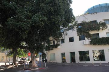 בניין המשרדים ברחוב מונטיפיורי 46, בתכנונו של רם כרמי, הצופה על כיכר המלך אלברט (צילום: אמית הרמן)