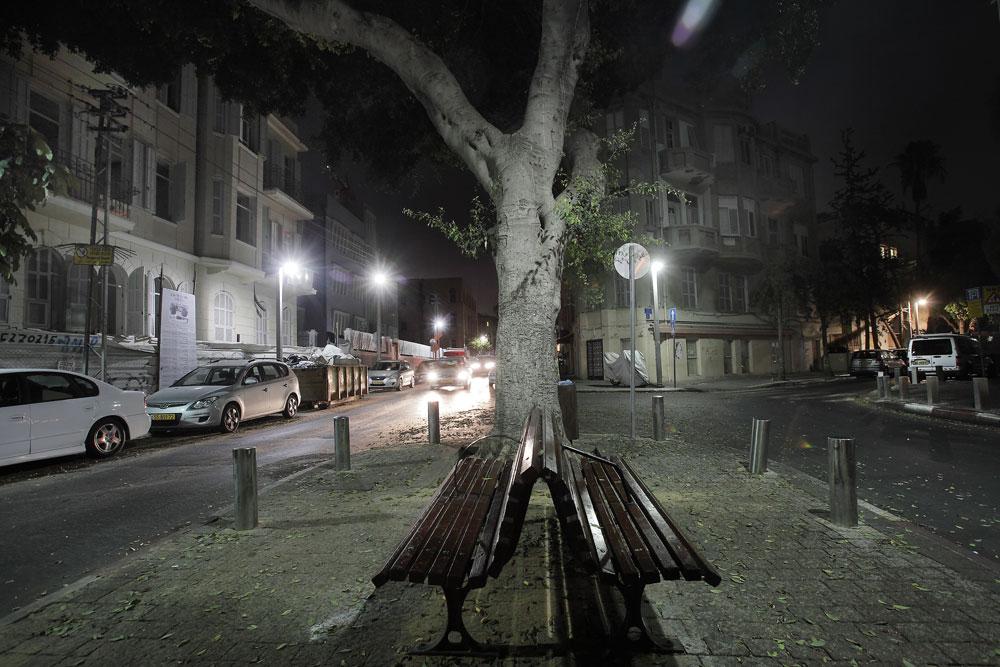 זו אולי הכיכר הנחמדה ביותר בתל אביב. ב''סיפור אהבות'', כיר המלך אלברט והספסל הרומנטי שבמרכזה אינם נפקדים (צילום: אמית הרמן)