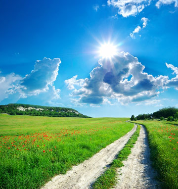 דרך חדשה ואני חדש (צילום: Shutterstock)