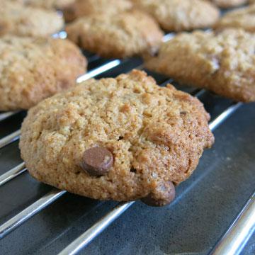 עוגיות שוקולד צ'יפס עם רסק תפוחים (צילום: גלי לופו אלטרץ )