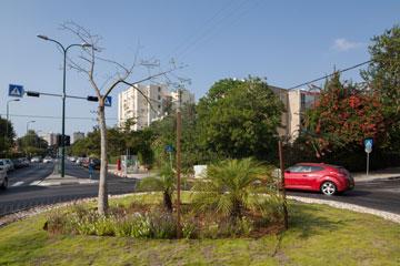רמת אביב. הרחובות צפופים מדי גם היום, מה יקרה כשהסטודנטים יגיעו? (צילום: טל ניסים)