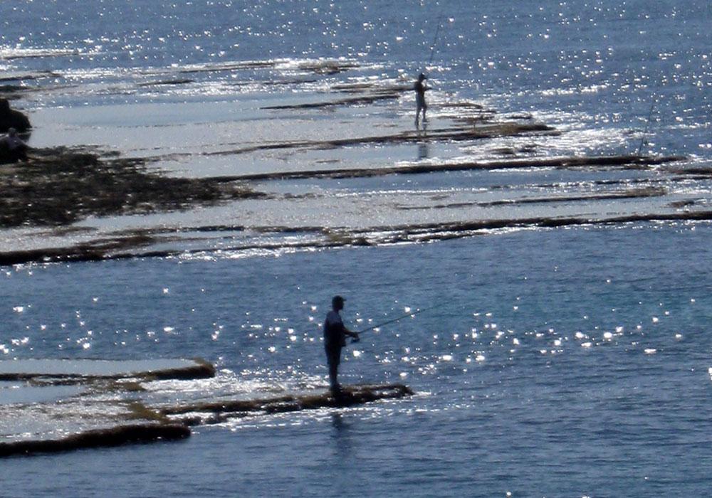 חוף בצת. להתבודד בין מפרצונים ושוניות  (צילום: אריאלה אפללו)