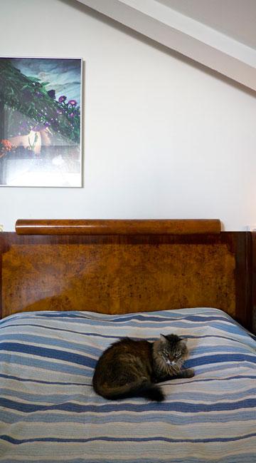 חדר השינה הפך לחדר ארונות (צילום: איתי סיקולסקי)