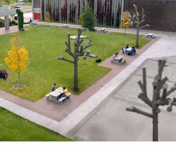 הצעה לשטח ציבורי, דב גנשרוא ועמי דרך, 2009 (באדיבות דב גנשרוא)