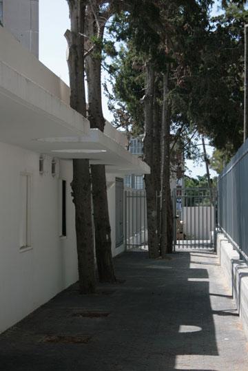 שומרים על העצים ומשלבים אותם בתוך המבנה. הגן ברחוב הדקל (צילום: HQ אדריכלים)