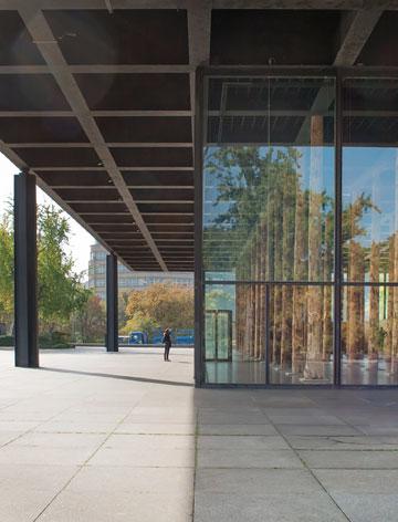 העמודים שתומכים בתקרה המאסיבית, וגזעי העץ שהוצבו כעת (צילום: גילי מרין)