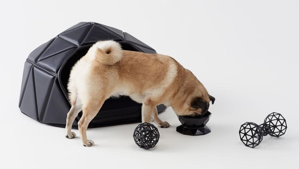 קולקצייה של מוצרים דו שימושיים לכלבים מבית NENDO: מרבץ שהופך לבית, עצם למשחק שהופכת לכדור וקערת אוכל ושתייה דו צדדית (צילום: Akihiro Yoshida)