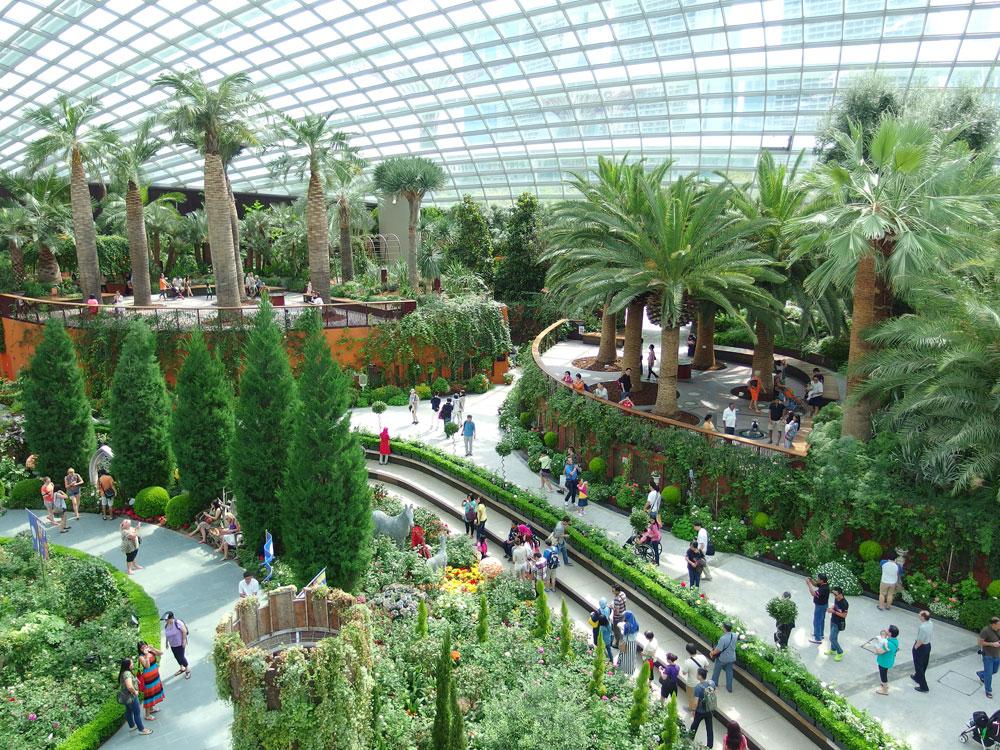 בתוך חממות שמוגנות בכיפות ענק פורחים יותר מ-220 אלף זני צמחים ופרחים. בין היתר אפשר ליהנות שם מחוויה של יער גשם טרופי (צילום: gibbyli, cc)