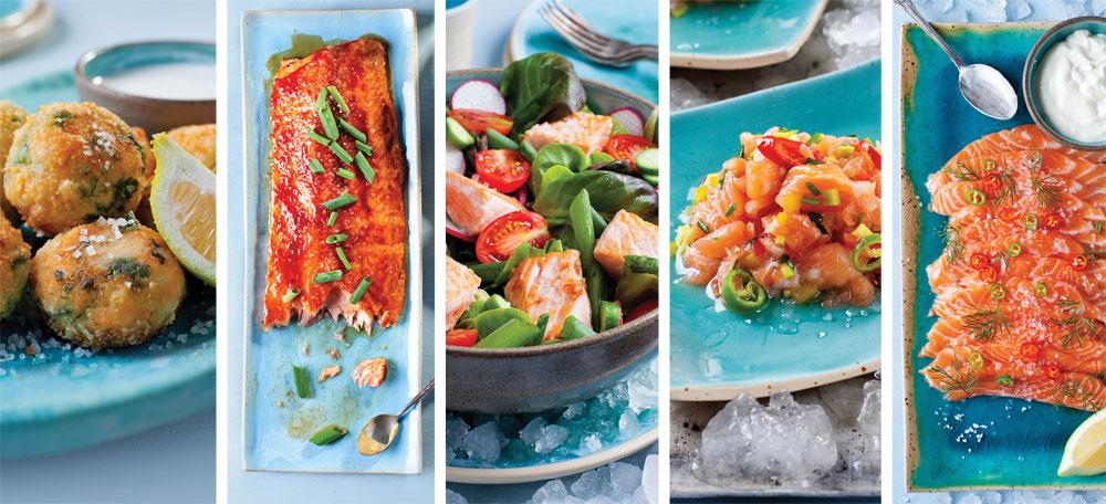 5 מתכונים חדשים ונהדרים למנות טעימות עם דג סלמון (צילום: בועז לביא סגנון: עמית דונסקוי)