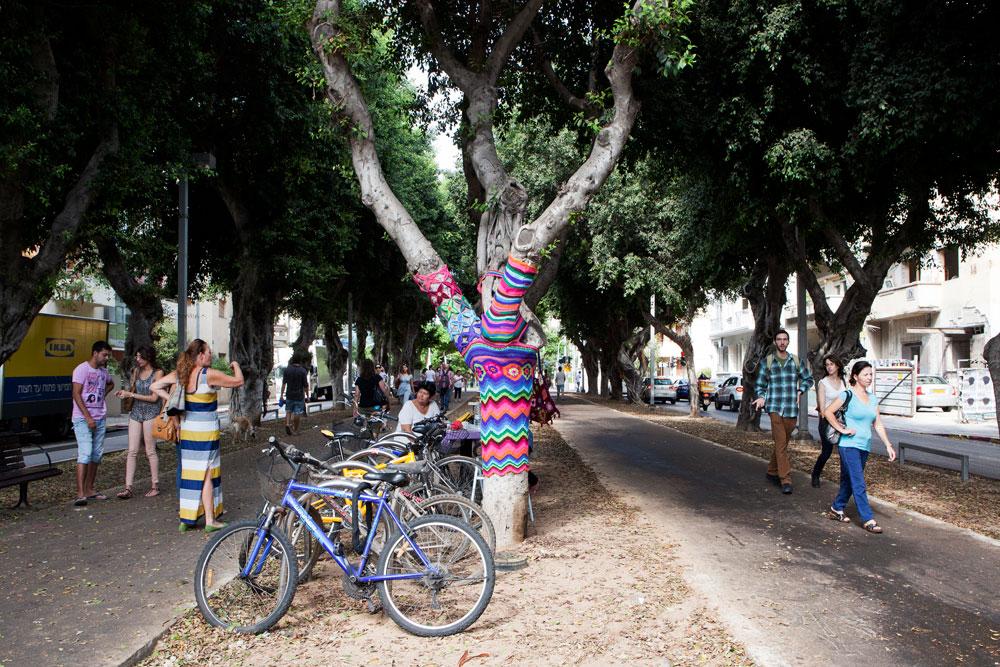 סרוגים, הגרסה התל אביבית. כך נראים העצים בשדרות רוטשילד עכשיו (צילום: אביעד בר נס)