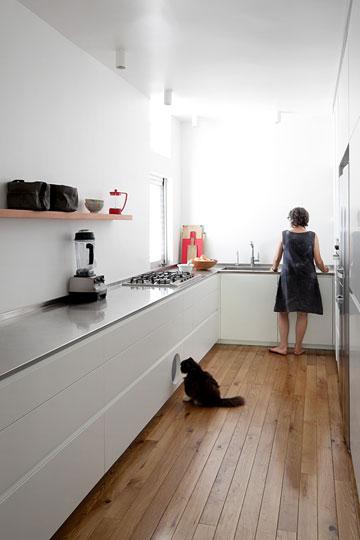 פתח עגול נפער בארונות המטבח התחתונים לטובת מעבר נסתר שמשמש את שני החתולים של המשפחה, בין המטבח למרפסת השירות, שבה ארגז הצרכים שלהם (צילום: אלעד שריג)