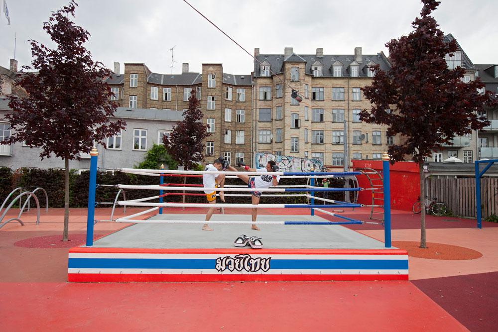 זירת אגרוף תאילנדי. גם מהגרים אסיאתים מתגוררים בקופנהאגן, ובפארק הזה הם מבטאים את התרומה שלהם לשכונה (צילום: Torben Eskerod)