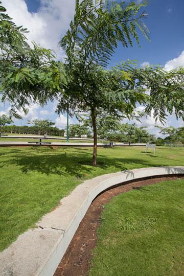 השקעה בפארקים (צילום: טל ניסים)