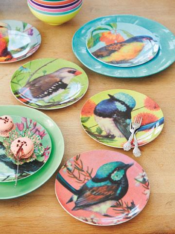 קולקציית הציפורים, ב''סופי'' (צילום: RICE)