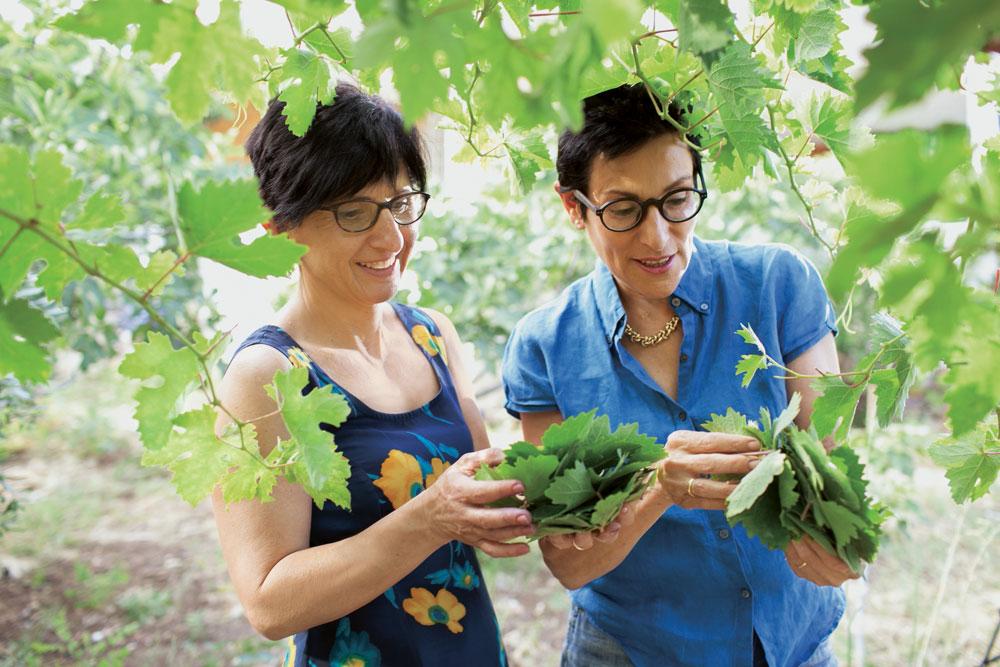 פיליס גלזר (מימין) ואמירה אשקר .   אמירה  יודעת לנצל פירות וירקות בעונתם, מכינה בעצמה כל מה שאפשר, ומשלבת בלהטוטנות בין שיטות מסורתיות למודרניות בכל הנוגע לשימור מזון (צילום: אנטולי מיכאלו)