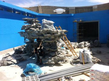 בונים ריף בבריכה החדשה (צילום: עידן קימא ובועז סמוראי)