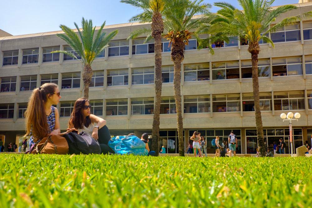 על הדשא ליד הפקולטה למדעי הטבע באוניברסיטת בן גוריון בבאר שבע. מדשאות מוריקות שאין למצוא בעיר עצמה (צילום: דני מכליס, אוניברסיטת בן-גוריון בנגב)