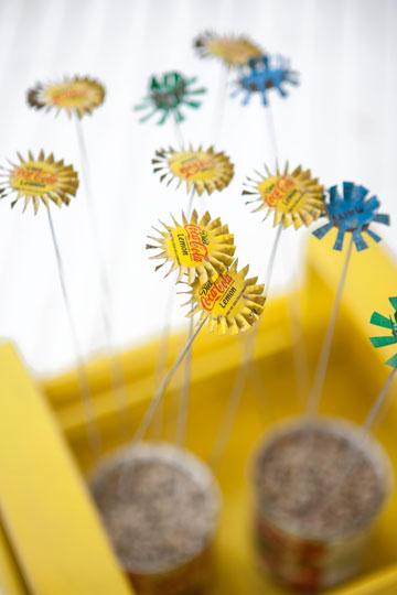 פרחים מפקקים (צילום: עדי גלעד)