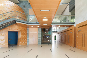 העיצוב העמוס מזכיר ספריית חומרים. המבואה והקומה הפתוחה מעליה (צילום: טל ניסים)