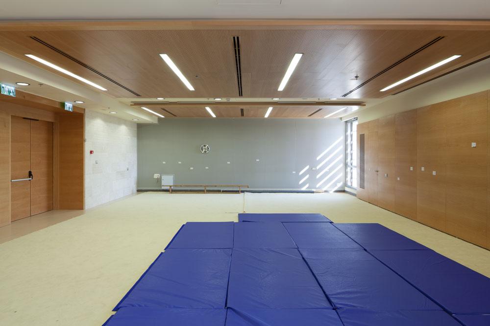 חדר פעילויות רב-תכליתי. הציוד מוכנס בסוף השיעור לארון נסתר דמוי קיר. ההשקעה העצומה בחיפויי עץ מסבירה את התקציב הגבוה (צילום: טל ניסים)