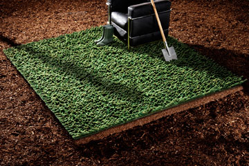 שטיח במראה דשא (''צמר'') (באדיבות צמר שטיחים יפים)