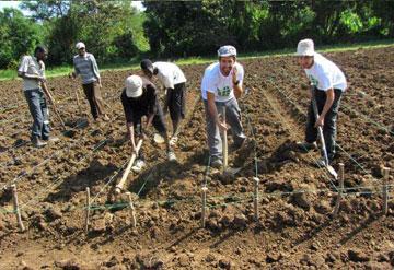 מכינים את הקרקע (צילום: באדיבות Fair Planet)