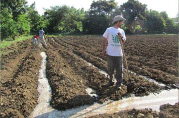 מתנדב ישראלי בשדות (צילום: באדיבות Fair Planet)