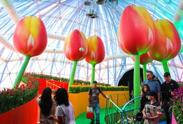 תערוכת הפרחים בפארק הכט, בתכנון המשרד (באדיבות אוג'י אדריכלים)