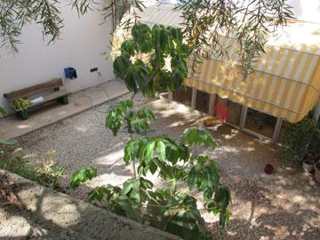 החצר הפנימית (צילום: מיכאל יעקובסון)