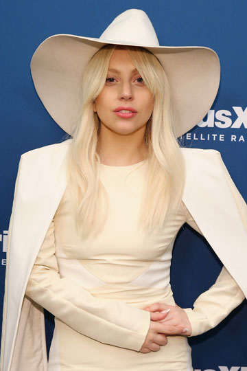 התחננה שהמעריצים יצפו בקליפ שוב ושוב. ליידי גאגא (צילום: gettyimages)
