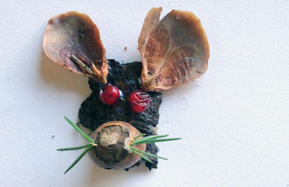 עכבר עם שפם מעלי אורן. כתוספת מעניינת ניתן להשתמש גם בזרעים ופירות טריים (צילום: שושן דגן)