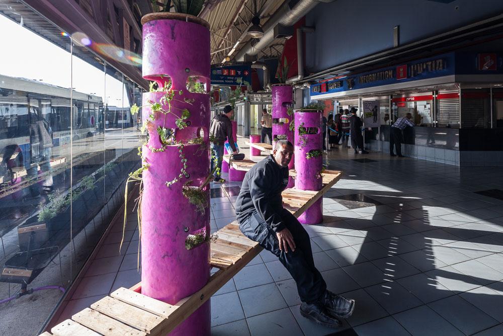 אלפי הנוסעים שעוברים בתחנה המרכזית בשבועות האחרונים כבר נהנים מהספסלים הסגולים של קולקטיב ''אנייה'', שהצמחים שמשולבים בהם מוסיפים צבע לא מוכר לחלל העצום (צילום: טל ניסים)