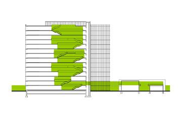 חתך הבניין. שטח משמעותי לטובת אזורים משותפים לכל גובה הבניין (הדמיה: StudioPeZ  דניאל זרחי, פדרו פנייה )