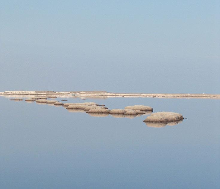 להסתכל על הטבע בצורה שונה. ים המלח (צילום: דרור זבדי)