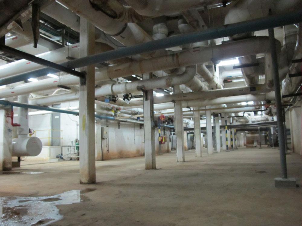 כל אדריכל שתיכנן את הבניין ''שלו'' בקמפוס, תיכנן את המרתף בהתאם למנהרה. היא משנה את פניה וממדיה ככל שמתקדמים בה (צילום: מיכאל יעקובסון)