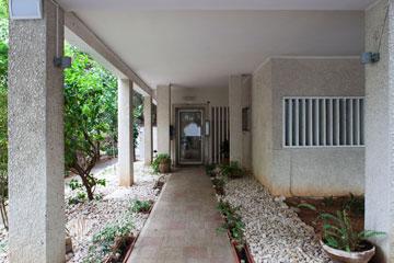 כניסה מטופחת, ביוזמת יו''ר ועד הבית (צילום: אביעד בר נס)