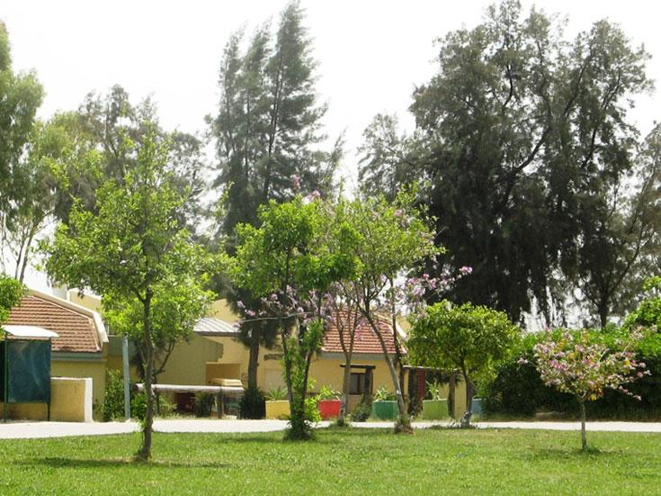 מקום בו בני הנוער מקבלים הזדמנות נוספת, כפר קדמה (צילום: אתר כפר הנוער קדמה)