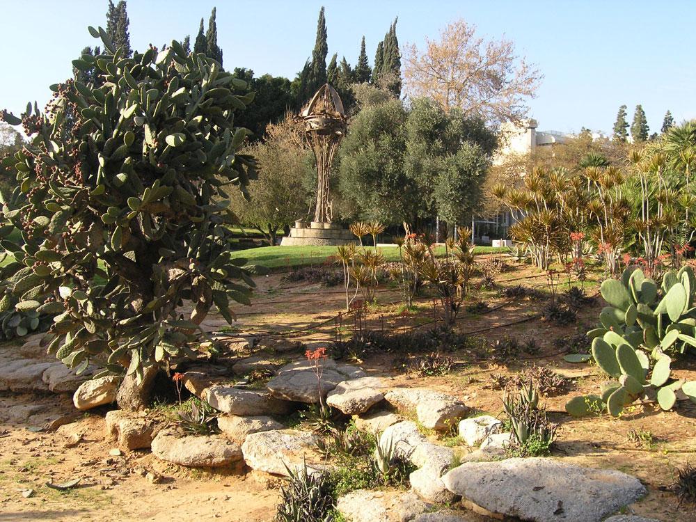 גן גסטטנר במכון ויצמן, רחובות. עמק ירוק ומדושא, עם שביל המטפס לנקודת תצפית (צילום: דן צור וליאור וולף אדריכלי נוף)