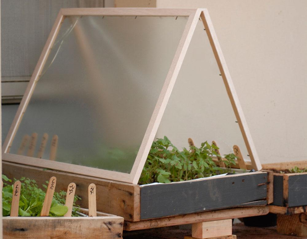 מיני חממה מסוג קלוש. פתרון נפלא למרפסת או לגינה קטנה. (צילום: שושן דגן )