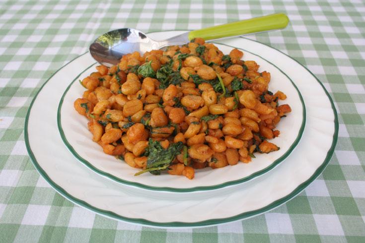 תבשיל חומוס עם כוסברה (צילום: אסנת לסטר)