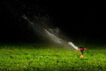 מומלץ להשתמש בממטרות בלילה לחימום האוויר, שכן טמפרטורת המים בלילות קרים גבוהה יותר מטמפרטורת האוויר (צילום: shutterstock)